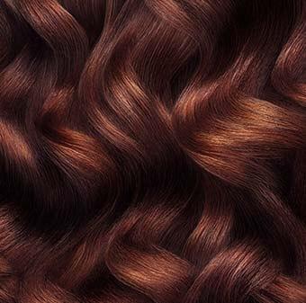 eugene-perma-1919-brunette-340x337